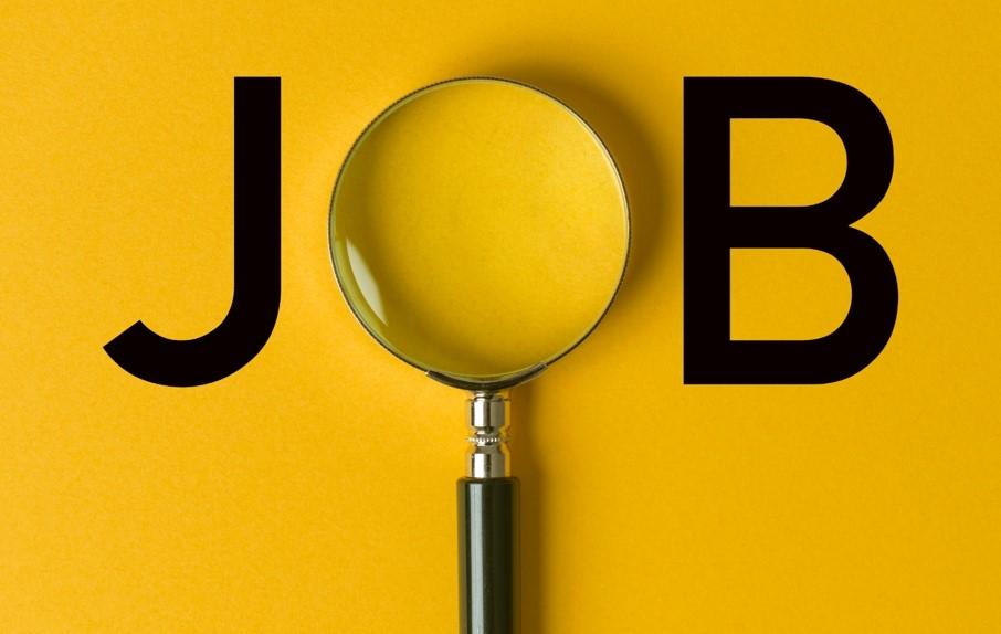 פוקוס על חיפוש עבודה